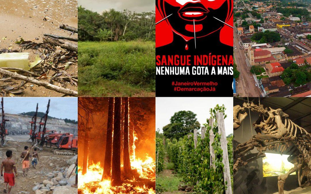 EXPO    La déforestation en Amazonie brésilienne